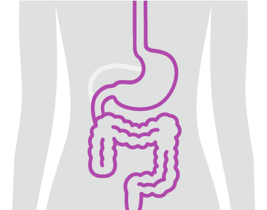 banner-icon-digestive-conditions.png