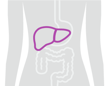 banner-icon-liver-conditions.png