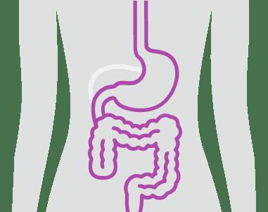 Digestive care illustration